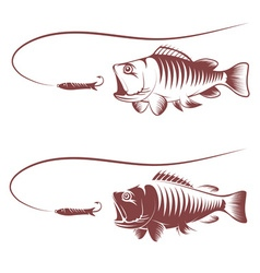 sea bass and lure template vector image vector image