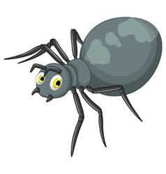 black spider cartoon vector image