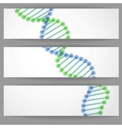 DNA Molecule Background vector image