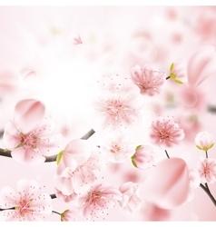 Cherry blossom sakura flowers EPS 10 vector image