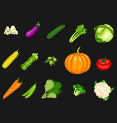 collection vegetables on a black background vector image