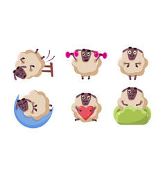 cute sheep character set funny farm animal in vector image