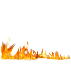 realistic fire flames background vector image