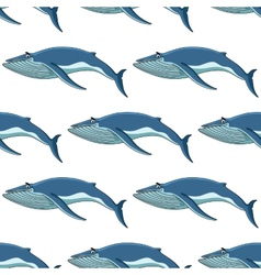 Seamless background pattern of blue whales vector image