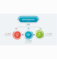 presentation infographic template 3 options vector image vector image