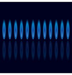 gas flames vector image vector image