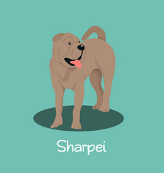 an depicting a cute sharpei dog cartoon vector image vector image