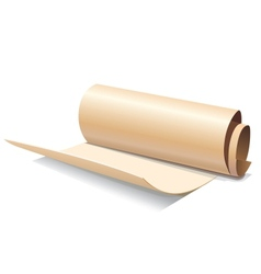 Ancient paper roll icon vector image