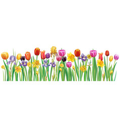 Border with multicolor spring flowers vector