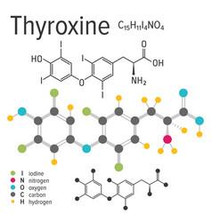 chemical formula thyroxine molecule vector image