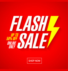 flash sale bright banner or poster one day big vector image