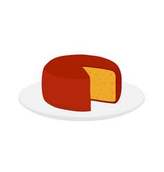 gouda cheese on plate cartoon flat style vector image