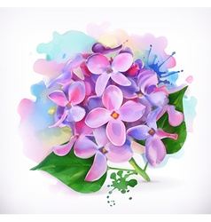 Lilac flowers watercolor painting mesh vector
