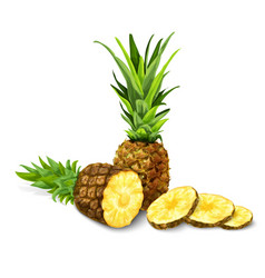 Pineapple isolated poster or emblem vector image