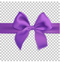 realistic purple bow isolated on transparent vector image