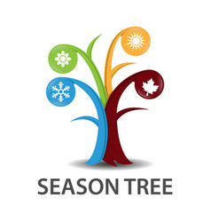 Tree of seasons vector