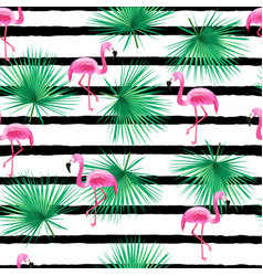 tropic seamless pattern with flamingo vector image