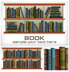 Books on shelves text vector image