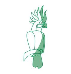 wild exotic bird vector image