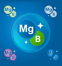 Complex vitamins magnesium and vitamin b vector