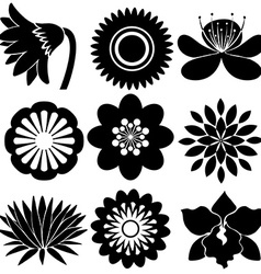 Floral designs in black colors vector