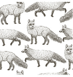 fox seamless pattern sketch hand drawn vector image