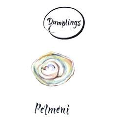 Homemade meat dumplings - russian pelmeni vector