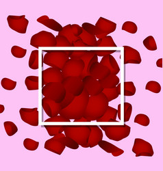 red rose petals valentine s card background vector image