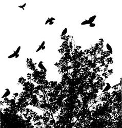 Tree birds vector