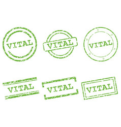 vital stamps vector image