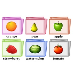 Word cards for fruits and vegetables vector