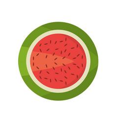 watermelon fruit food fresh vector image vector image