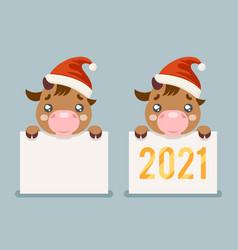 2021 year cute cartoon baby cow ox cub blank paper vector