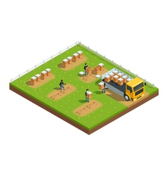 Beekeeping apiary isometric composition vector