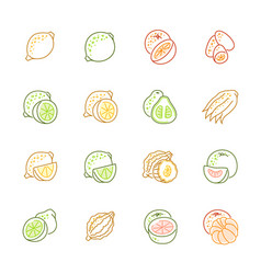 Citrus fruits icons - lemon orange and pomelo vector