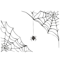 Spiderweb Big black spider web Black scary vector