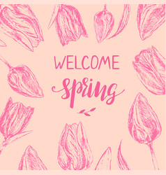 template with hand drawn pink tulips vector image