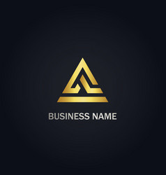 triangle line a sign company logo vector image