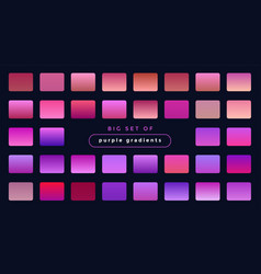 Vibrant set purple and pink gradients vector