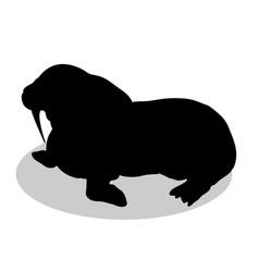 walrus arctic black silhouette animal vector image