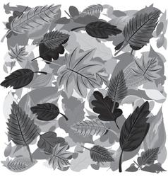 Monochrome Autumn Leaves vector image