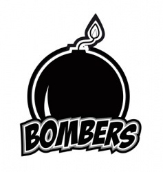 bombers vector image vector image