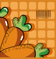 Fresh carrots super market products vector