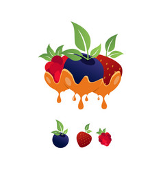 fruits logo vector image