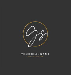 G s gs initial letter handwriting and signature vector