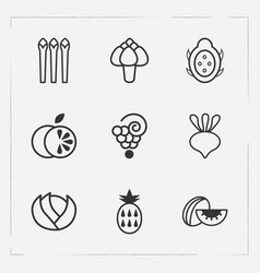 set of fruit icons line style symbols with dragon vector image