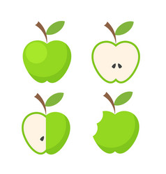 set of green apple fruit icon on white stock vector image