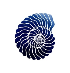 Graphic circle seashell vector image