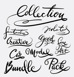 Collection and bundle hand written typography vector