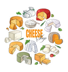 Collection of cut sliced cheese assortment hand vector